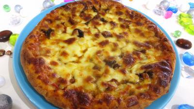 Sauce tomate pour pizza : Assiette de pizza forestière