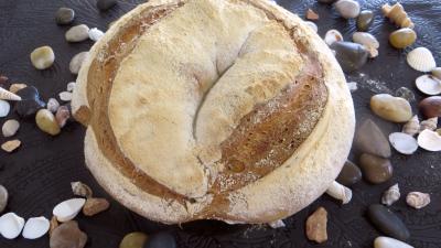 pain de campagne : Pain de campagne sur levain