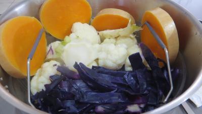 Chou-fleur et légumes vapeur - 2.1