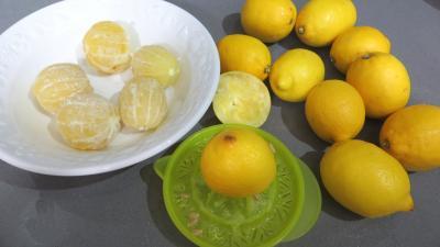 Chutney aux citrons - 1.2