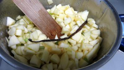 Confiture de pommes à la rhubarbe façon compote - 4.2