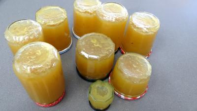 Confiture de pommes à la rhubarbe façon compote - 6.1