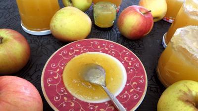 Recette Coupelle de confiture de pommes à la rhubarbe façon compote