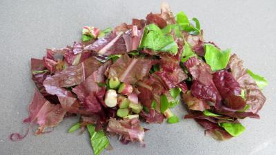 Salade d'été aux abricots - 1.2