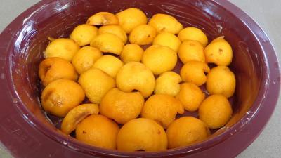 Clafoutis aux nèfles du Japon - 3.3
