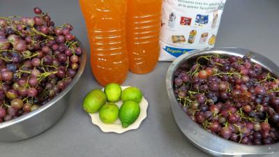 Ingrédients pour la recette : Gelée de raisins au reste de punch