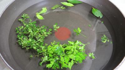 Potage aux tomates et aux avocats - 5.2
