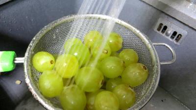 Cailles aux raisins - 6.1