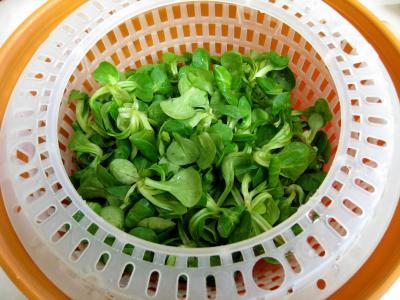 Salade de mâche aux foies de volaille et aux pommes - 1.4