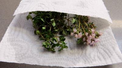 Tagliatelles fraîches aux fèves - 3.2