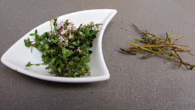 Tagliatelles fraîches aux fèves - 3.4