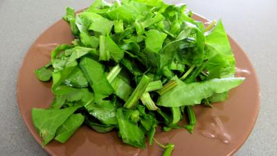 Fèves et légumes à l'oseille - 1.2