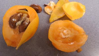 Tatin aux nèfles du Japon - 2.2