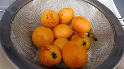 Purée de nèfles du Japon - 1.4