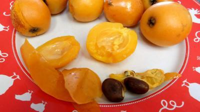 Purée de nèfles du Japon - 4.2