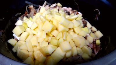 Blanquette de pommes de terre - 5.3