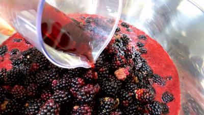 Confiture de mûres au vin rouge - 1.2