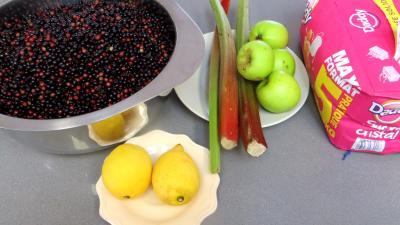 Ingrédients pour la recette : Confiture de baies de sureau à la rhubarbe