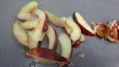 Salade de Reines-claude et fruits du verger - 6.1