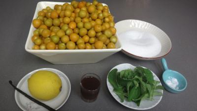 Ingrédients pour la recette : Compote de physalis à la stévia pour diabétiques