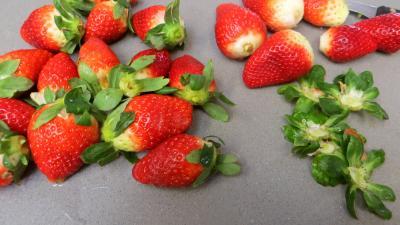 Cheesecake aux fraises - 1.2