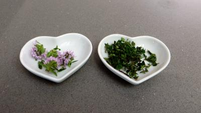 Encornets à la niçoise - 1.2