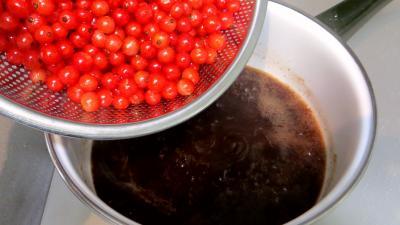 Soupe de groseilles à la Bourguignonne - 3.3