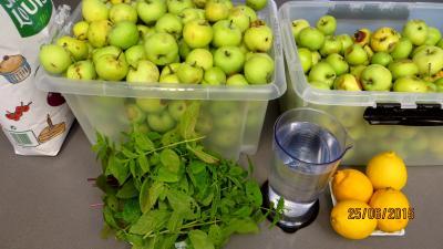 Ingrédients pour la recette : Gelée de pommes à la menthe