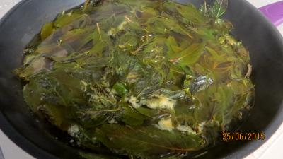 Gelée de pommes à la menthe - 1.4