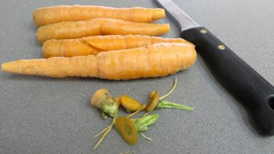 Chips aux courgettes, carottes et betterave rouge - 1.1