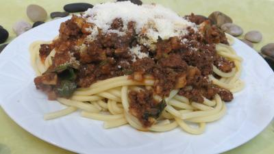 lasagne : Assiette de bucatini à la calabraise