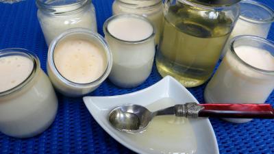 yaourt nature : Yaourts au miel