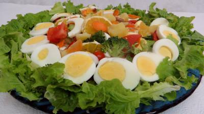 Salade batavia - 5.2