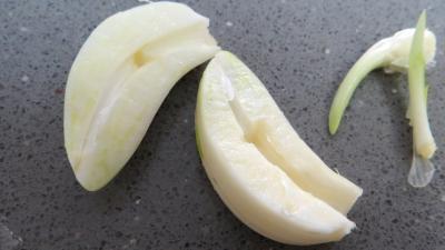 Cuisse de dinde à la moutarde - 1.3