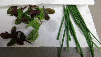 Risotto au safran et aux fèves - 2.2