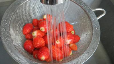Sorbet aux framboises et aux fraises - 1.2