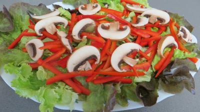 Fèves en salade aux gésiers confits - 5.2