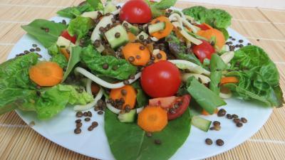 concombre : Plat de lentilles en salade