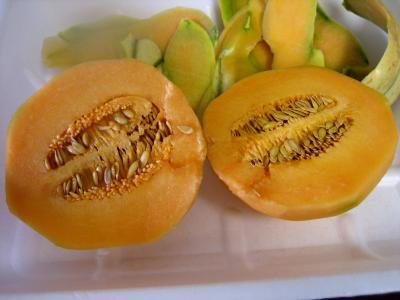 Image : Melon