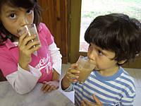 boissons chocolat : Dégustation de lait de poule au chocolat