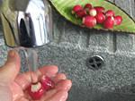 Espadon aux haricots mange-tout façon chinoise - 2.2