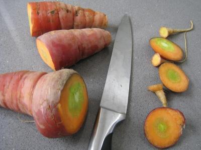 Epinards aux fruits de mer - 7.1