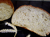 Ici, une proportion importante de gluten