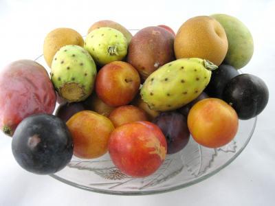 Image : Nutriments