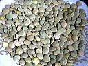 Image : Sels minéraux