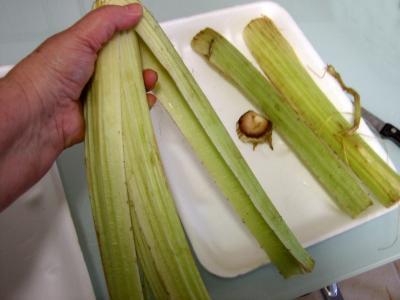 Amuse-bouche crème de cardon - 2.2