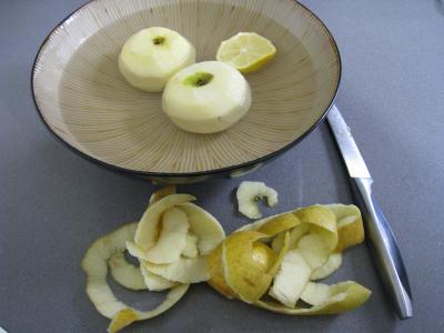 Aiguillettes de canard gras au coulis de pommes - 2.2