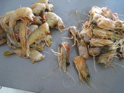 Crevettes à l'anis et sauce à l'orange - 3.1