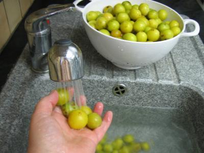 Confiture de mirabelles au Martini - 1.1