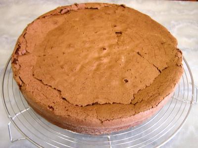 Gâteau au chocolat et son coulis de melon et pêches - 10.2